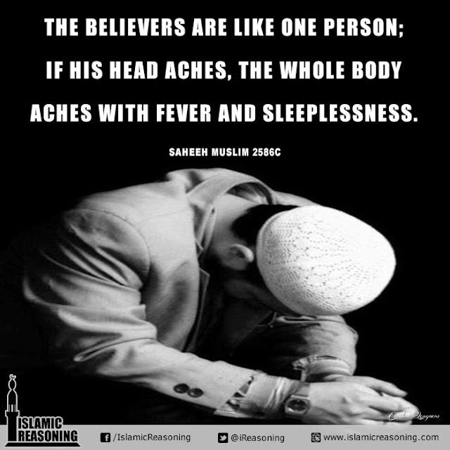 Believers are like one body | Islamic Reasoning Designs