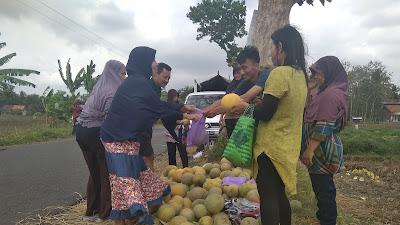 Pituruh Mempunyai Potensi Pertanian Lebih Unggul Dibandingkan Kecamatan Lain