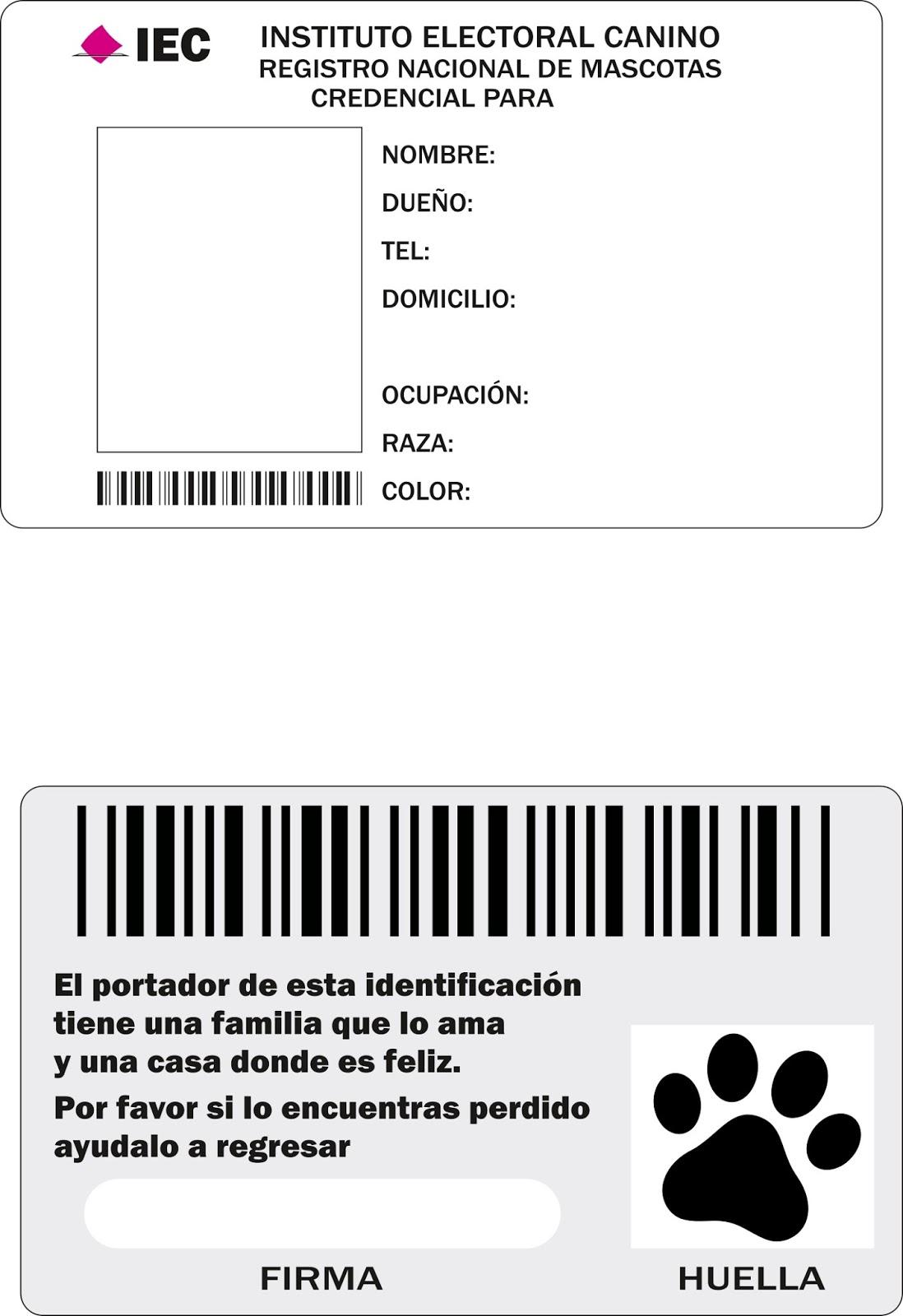 FORMATO DE CREDENCIAL PARA MASCOTA EN JPG ~ Colores Activos