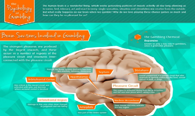 The Psychology of Gambling #infographic