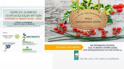 Δωρεάν διάθεση παραδοσιακών φυτών Κυριακή 31 Μαΐου 2020