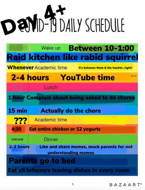 funny daily schedule for teens