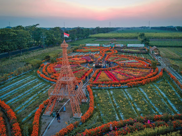 Wisata Dewi Cemara Kemang Kediri