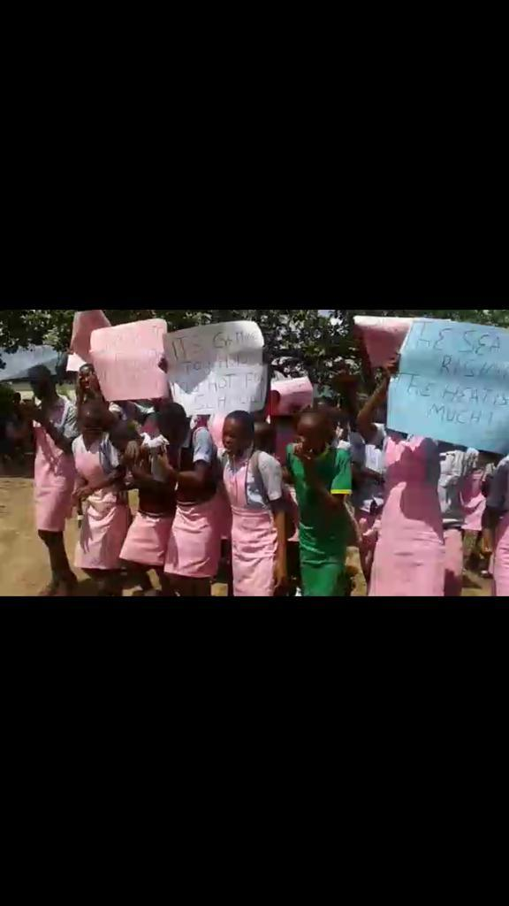 Global Warming: Anambra Teenagers, Medical Students, Others Stage Peaceful Protest  By Izunna Okafor