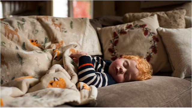 Konten Shutterstock yang paling banyak dicari dua bulan kedepan