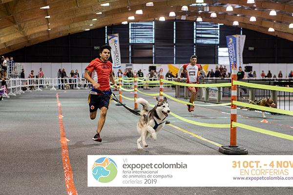 Niños-adultos-perros-Expopet-2019-corferias