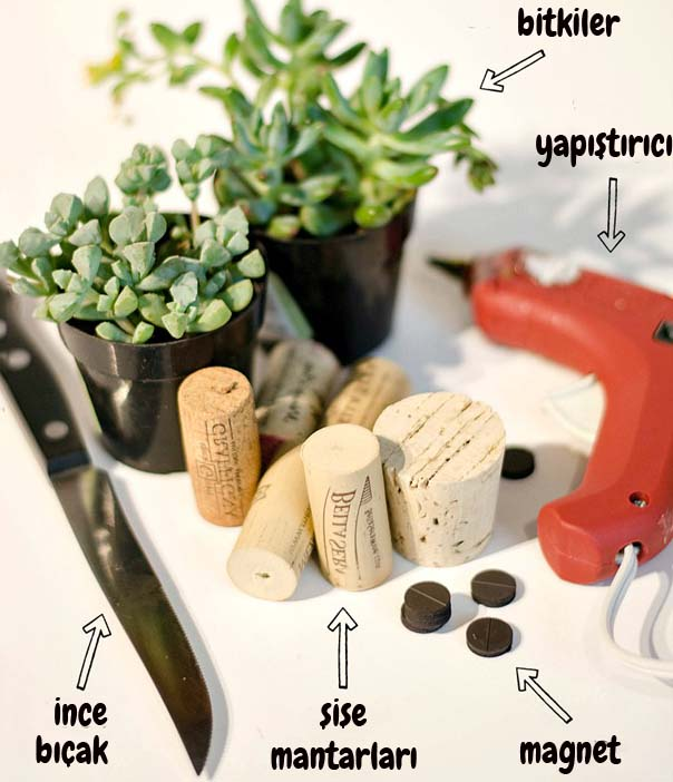 mantar tıpalarından bitki saksısı yapmak için gerekli malzemeler