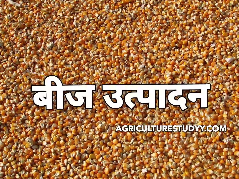 भारत में बीज उत्पादन एवं बीज उत्पादन का महत्व