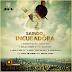 Ray B - Saindo Da Incubadora (Single) (2o17) [DOWNLOAD]