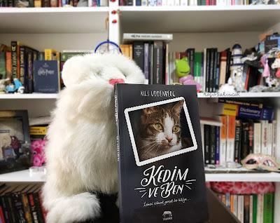 kağıt salıncak, kitap, kedi