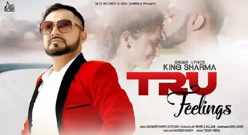 Tru Feelings   King Sharma