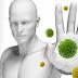16 Alimentos para ter um Sistema Imunológico de Ferro
