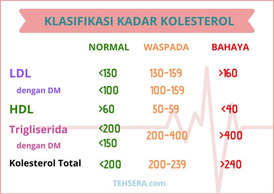 batas kolesterol normal