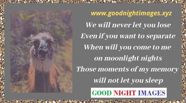 Have a Good Night Meme | good night beautiful | funny good night meme