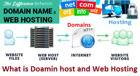 What is Domain Hosting and Web Hosting?