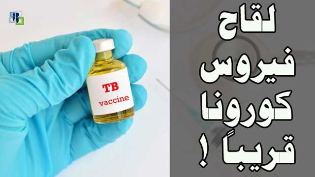 لقاح السل ضد فيروس كورونا المستجد