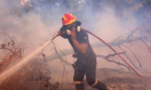 Ισχυρές δυνάμεις της Πυροσβεστικής επιχειρούν σε φωτιά που ξέσπασε στα Κάτω Ραβένια. Η φωτιά καίει σε χορτολιβαδική έκταση χωρίς να απειλεί τους οικισμούς.