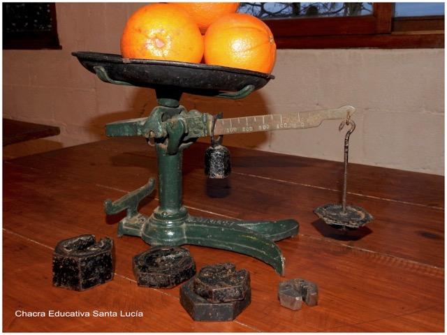 Kilo, unidad de peso - Naranjas en la balanza - Chacra Educativa Santa Lucía