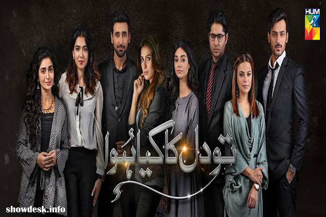 Tou Dil Ka Kia Hua OST Lyrics | Hum TV Upcoming Drama 2017