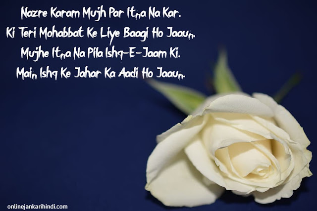 Happy Rose Day 2020 Messages for lovers
