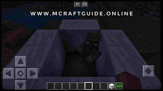 minecraft zombie villager trapped