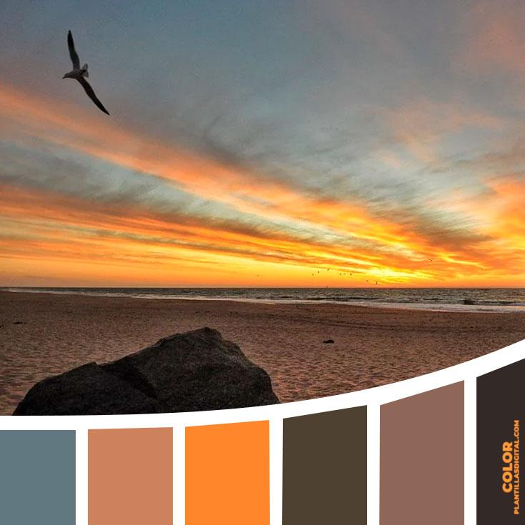 color_350