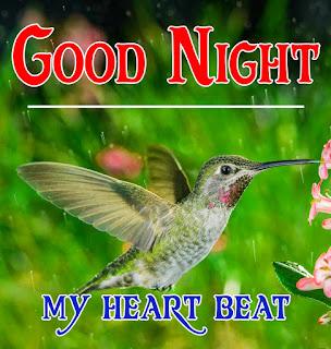 new good night Images%2B111