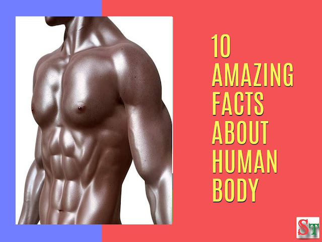 10 amazing facts about human body