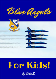 Blue angels book cover pic