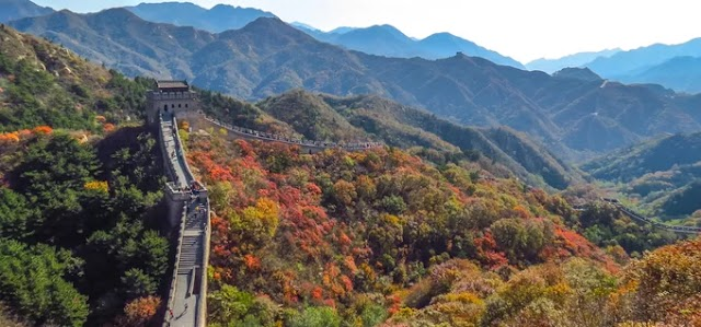 5 famous red and yellow forests in China