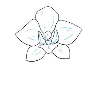 تعليم الرسم بالرصاص زهرة أوركيد
