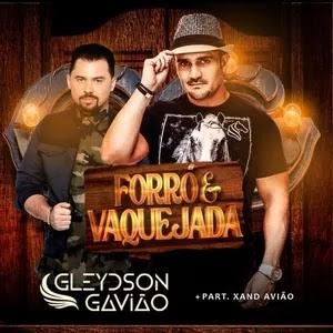 """Gleydson Gavião lança música """"Forró e Vaquejada"""" partir. Xand Avião"""