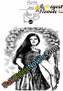 Haalim Novel Episode 24 by Nimra Ahmed