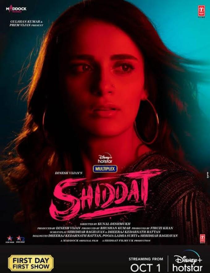 Shiddat Full Movie Download 480p HD Dual Audio