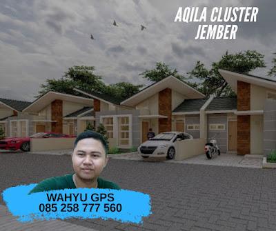 aqila cluster jember