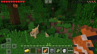 Download Minecraft Pocket Edition Apk Mo