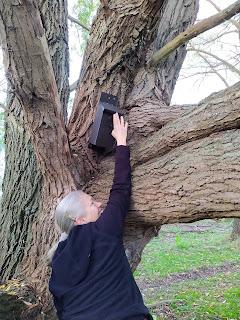 geocaching rozenburg cache gevonden