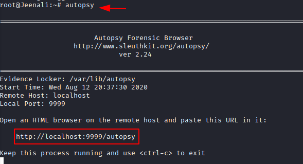 Forensic Investigation: Autopsy Forensic Browser in Linux