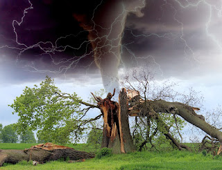 Tornado-Arvore