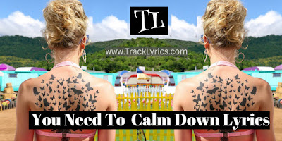 you-need-to-calm-down-song