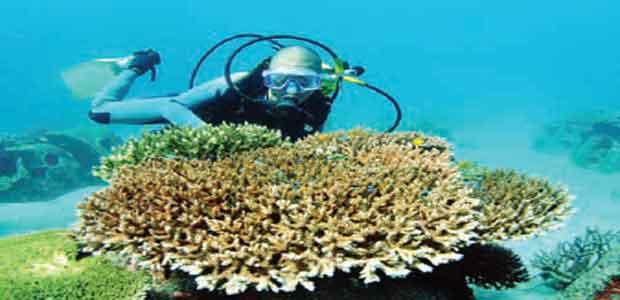 pulau yang terbentang dari Bali hingga Lombok Pulau Sumbawa - Destinasi Wisata Dunia di Timur Indonesia