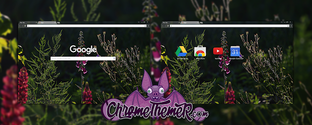 Nature's Beauty Google Theme  | Chrome Web Store