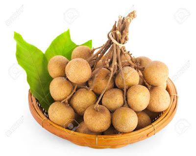 jasa tukang taman surabaya merawat buah klengkeng