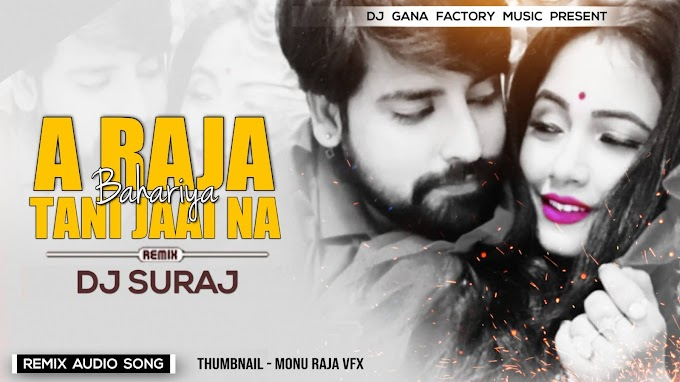 Raja Jai Na Bahariya (Remix) Dj Suraj Chakia