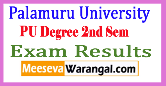 PU Degree 2nd Sem Results 2017