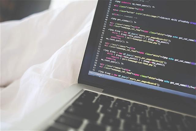 text editor paling bagus untuk programer