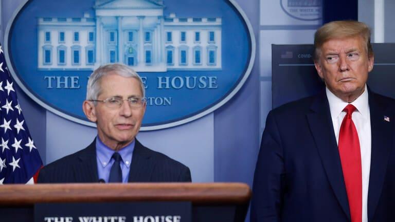 مسؤول-أمريكي-بارز-يفضح-ادعاءات-ترامب-منشأ-فيروس-كورونا-المستجد