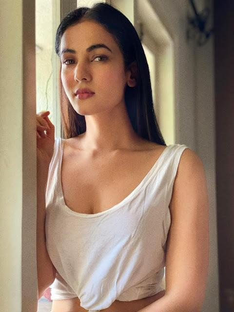 Bollywood Actress Sonal Chauhan Hot Pics Actress Trend