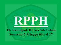 Download RPPH TK B Usia 5-6 Tahun Semester 2 Minggu 09 s-d 17