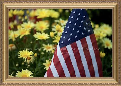 Daisy Flag_015